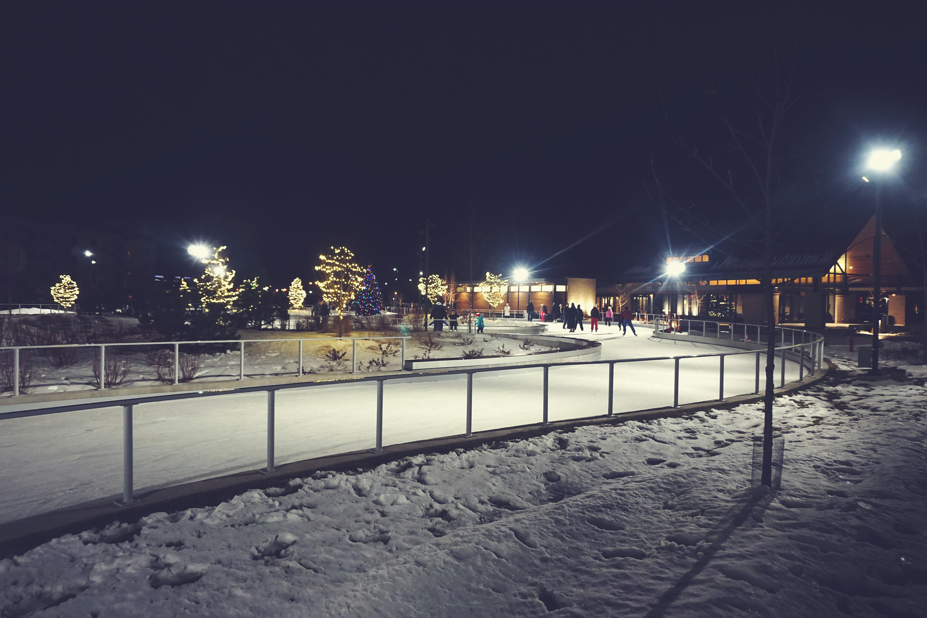 Ice skating trail at night with Christmas lights