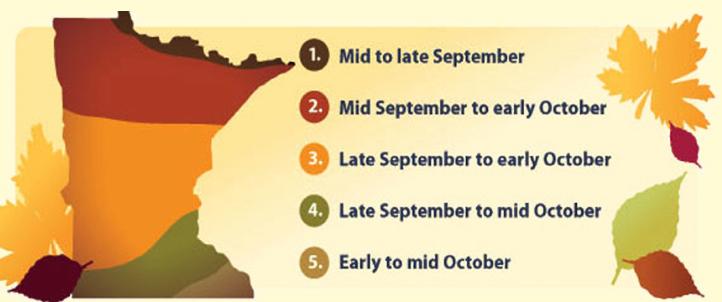 Minnesota fall colors graph