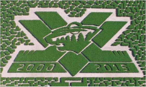 Minnesota Wild logo in corn field