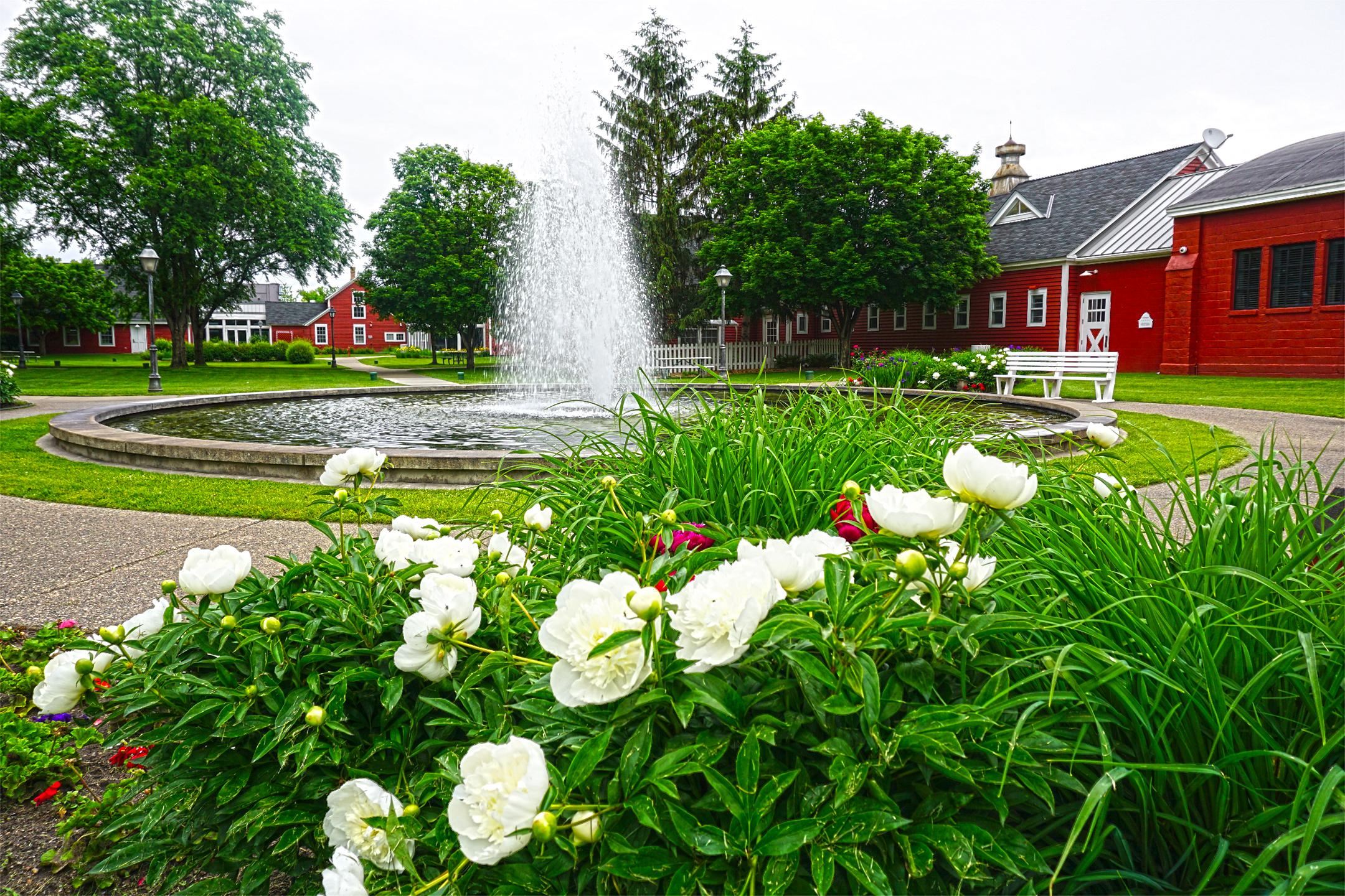 Large fountain in garden