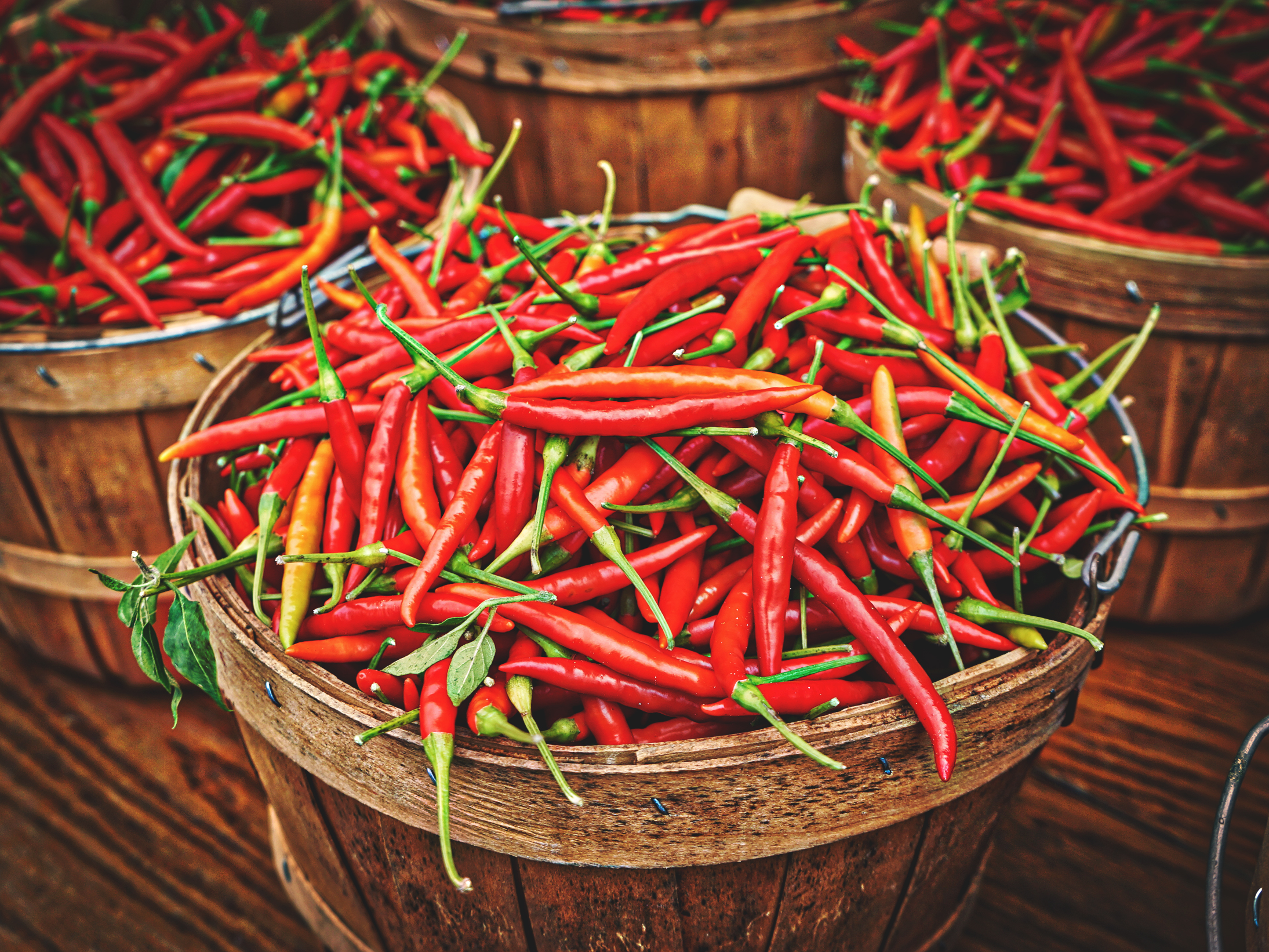 Chile peppers in a barrel