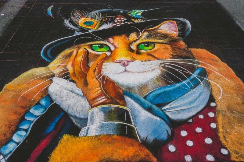 Chalkfest Cat