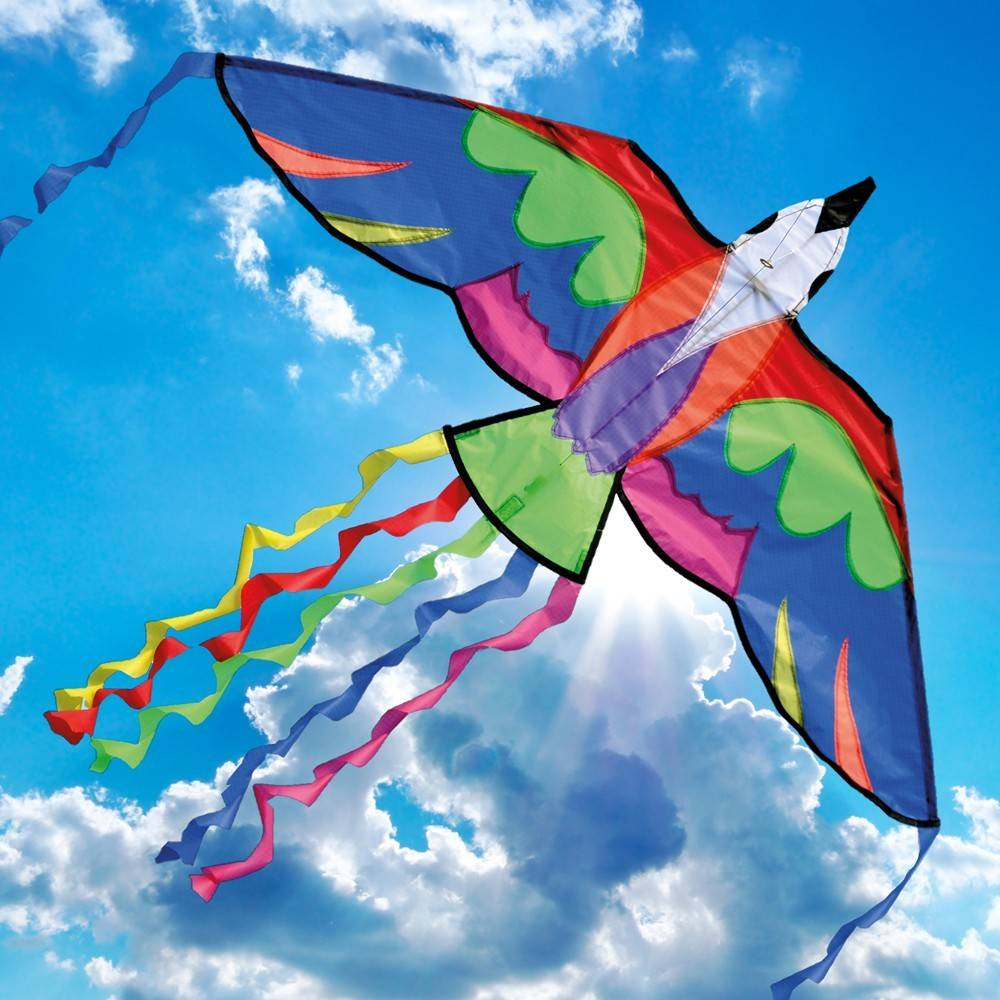 kite flying in the sky