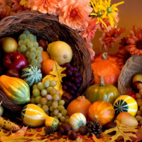 Fall harvest fruit