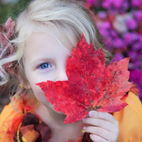 Minnesota girl with colorful fall leaves
