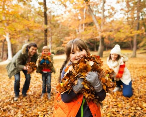 Image result for fall family hike