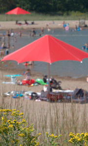 elm creek beach umbrella